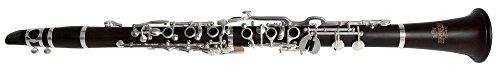 Roy Benson Bb Klarinette MOD.CG-420 Dt. System Grenadill, inkl. Leichtetui